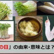 発芽野菜の日のアイキャッチ画像