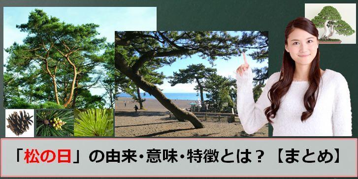 松の日のアイキャッチ画像